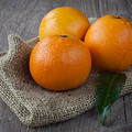 Orange fruit Print by Sabino Parente