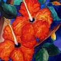 Orange Hibiscus Print by Lil Taylor