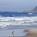 Oregon coast Print by Elvira Butler
