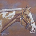 Paint Horse Poster by Dorothy Coatsworth