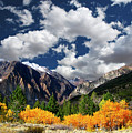 Parker Canyon Fall Colors California's High Sierra Poster by Bill Wight CA