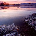 Pastel Dawn Print by Mike  Dawson