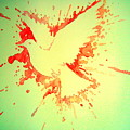 Peace Made by War Print by Paulo Zerbato