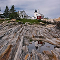 Pemaquid Reflections Poster by M S McKenzie