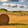 Perfect Harvest Landscape Print by Amanda And Christopher Elwell