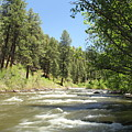 Piedra River Print by Eric Glaser