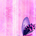Pink and Purple Butterfly Companions 2 Print by JQ Licensing