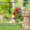 Prayer of St. Francis of Assisi Print by Bonnie Barry