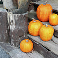 Pumpkin Autumn in Adirondacks Print by Kate  Leikin