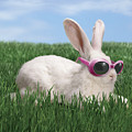 Rabbit With Sunglasses Poster by George Caswell