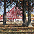 Red Barn through The Trees Poster by Pamela Baker