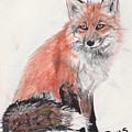 Red Fox in Snow Print by Marqueta Graham
