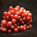 Red Grapes Print by Andee Design