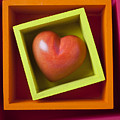 Red Heart In Box Poster by Garry Gay