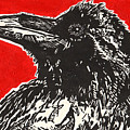 Red Hot Raven Print by Julia Forsyth