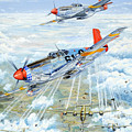 Red Tail 61 Print by Charles Taylor
