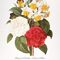 REDOUTE: BOUQUET, 1833 Print by Granger