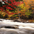 River Rapids Fall Nature Scenery Poster by Oleksiy Maksymenko