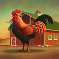 Rooster and the Barn Poster by Robin Moline