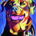 Rottweiler - Starr Print by Alicia VanNoy Call
