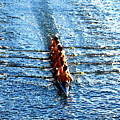 Rowing In Print by David Lee Thompson