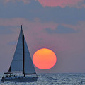 Sailboat at sunset  Poster by Shay Levy