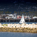 Sailboat in Harbor Poster by David Buffington