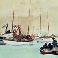 Schooners at Anchor in Key West Poster by Winslow Homer