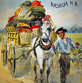 SEED COMPANY POSTER, c1880 Poster by Granger