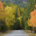 Selkirk Color Print by Idaho Scenic Images Linda Lantzy