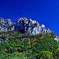 Seneca Rocks National Recreational Area Poster by Thomas R Fletcher
