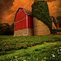 Sentient Poster by Phil Koch