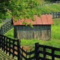 Shed and Fence Print by Michael L Kimble