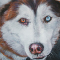 Siberian husky red Poster by Lee Ann Shepard