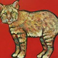 Smug Bobcat Poster by Carol Suzanne Niebuhr