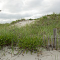 Smugglers Beach Dune South Yarmouth Cape Cod Massachusetts Poster by Michelle Wiarda