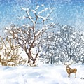 Snow Flurry Poster by Arline Wagner