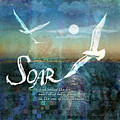 Soar Poster by Evie Cook
