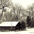 SOFT SNOW COVER Print by Don Durfee