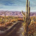 Southern Arizona Print by Jack Skinner