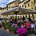 Square Amphitheater in Lucca Italy Print by David Smith