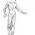 Standing Male Nude Poster by Adam Long