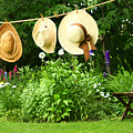 Summer straw hats hanging on clothesline Poster by Sandra Cunningham