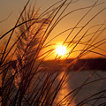 Sunset over Lake Wylie SC Print by Dustin K Ryan