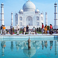 Taj Mahal  by Nila Newsom