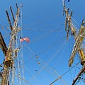 Tall Ship Series 16 Print by Scott Hovind