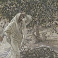 The Accursed Fig Tree Print by Tissot