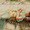 The Betrothed Print by John William Godward