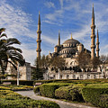 The Blue Mosque in Istanbul Turkey Print by David Smith