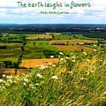 The Earth Laughs in Flowers Poster by Jen White